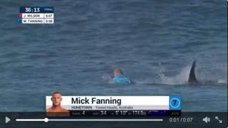 Fanning Attacked by shark