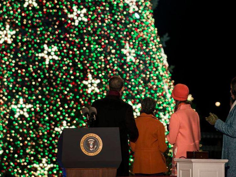 Obamas with White House Christmas tree