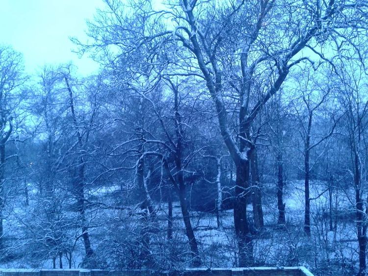 Snow South Woodford northeast London