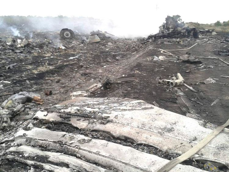 A general view shows the site of a Malaysia Airlines Boeing 777 plane crash in the settlement of Grabovo in the Donetsk region