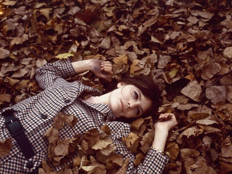 Sandie Shaw rests of a bed of autumnal leaves in 1965