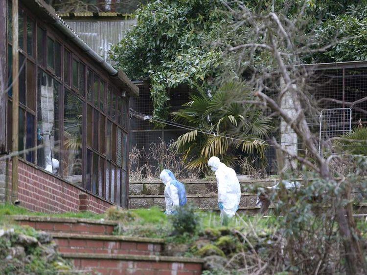 Farnham shootings