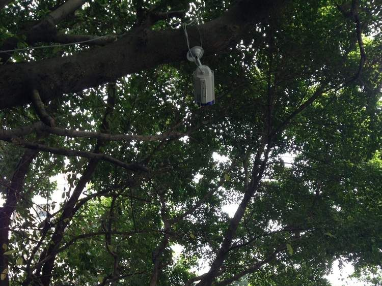 A CCTV camera outside the Southern Weekend offices
