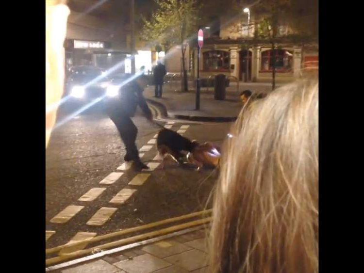 Police dog attacks man.