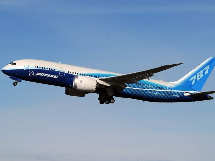 A 787 Dreamliner passenger jet.