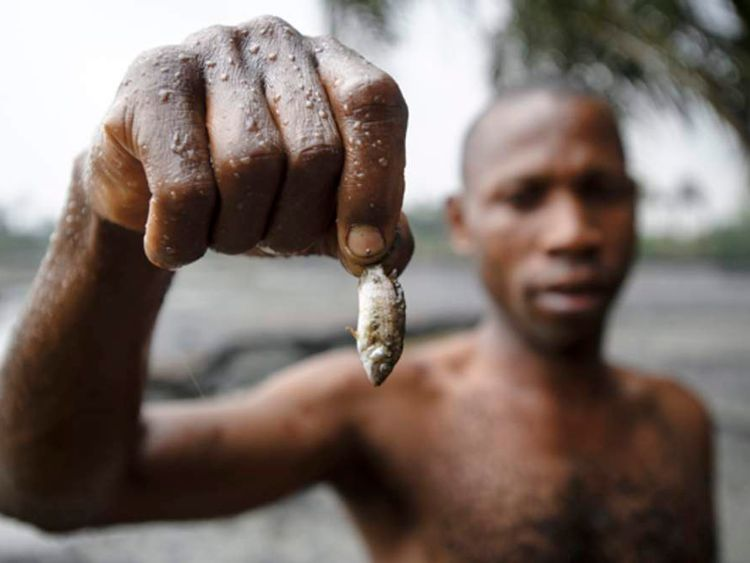 A fisherman shows the effects of oil pollution in Goi