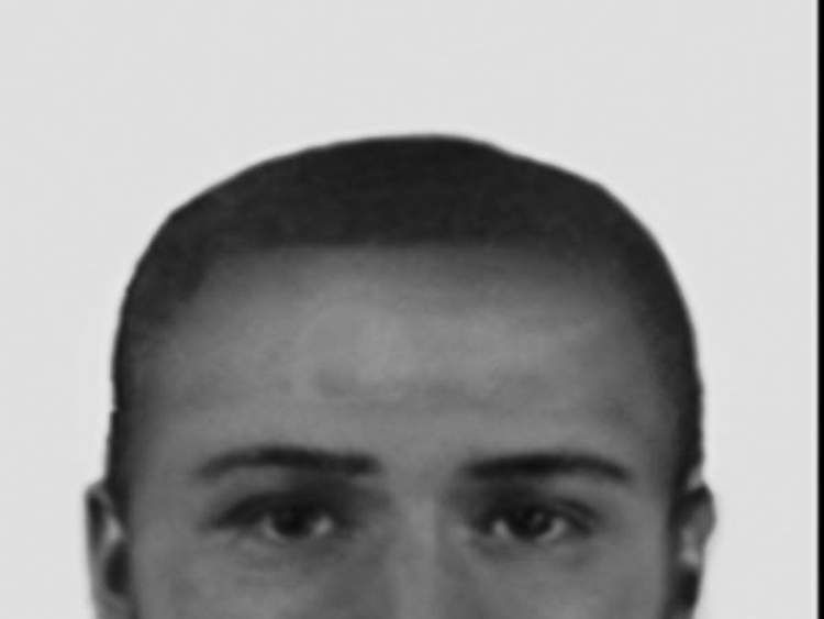 An e-fit of the alleged assailant