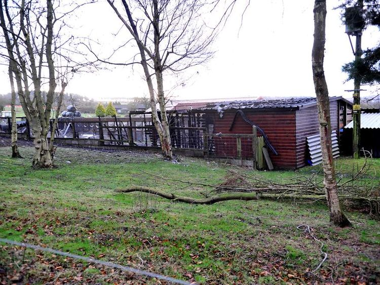 Pinetrees Cattery in Huntington where a fire overnight destroyed many of the buildings. Photo: Birmingham Mail