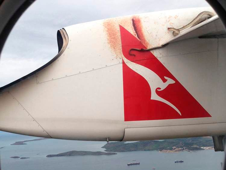 A python lies wedged on the wing of a Qantas passenger plan as it flies over Port Moresby