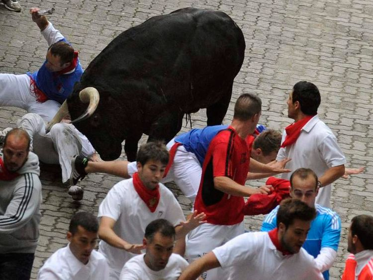 An American runner gored in the leg by a Victoriano del R?o fighting bull, falls at the entrance to the bullring during the third running of the bulls of the San Fermin festival in Pamplona
