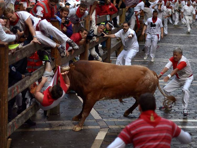 Man being attacked by bull