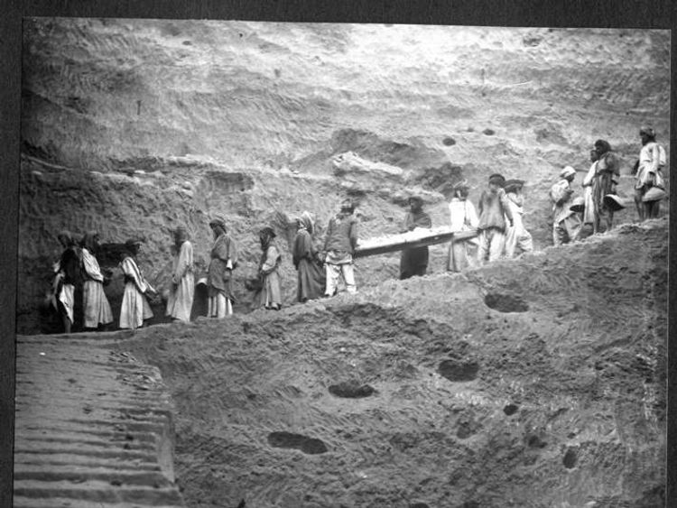050814 $$ Museum Finds 'Pre-Flood' Skeleton In Storage