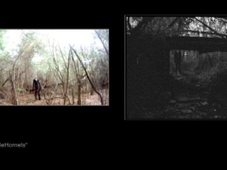 Images of the Slender Man