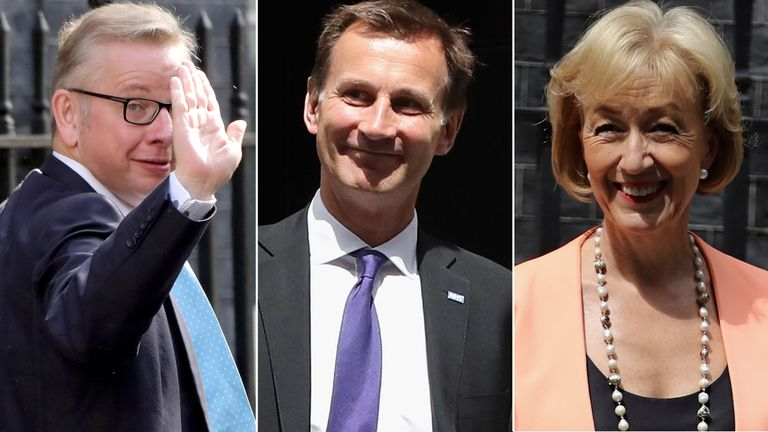 Michael Gove, Jeremy Hunt, Andrea Leadsom.