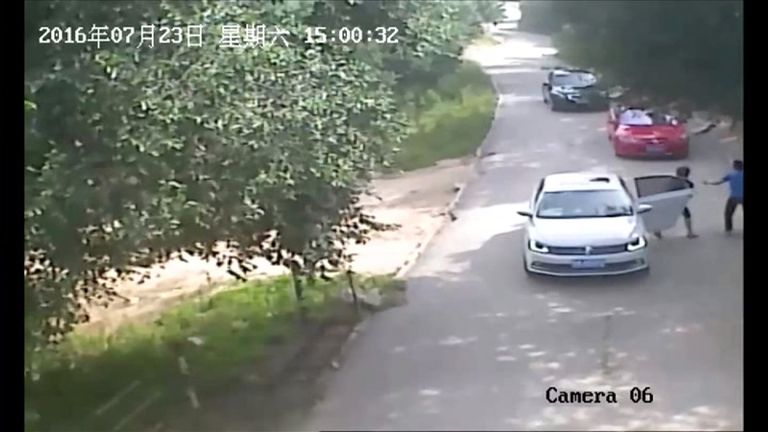 CCTV footage shows the moment a man and woman jump out of the car to chase the tiger