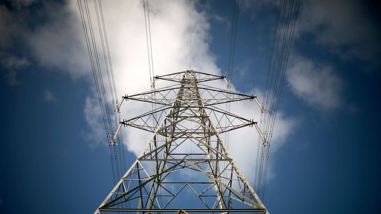 A pylon carries electricty from the Wylfa nuclear power station.