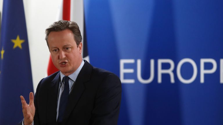 David Cameron addresses fellow leaders at the Council of Europe