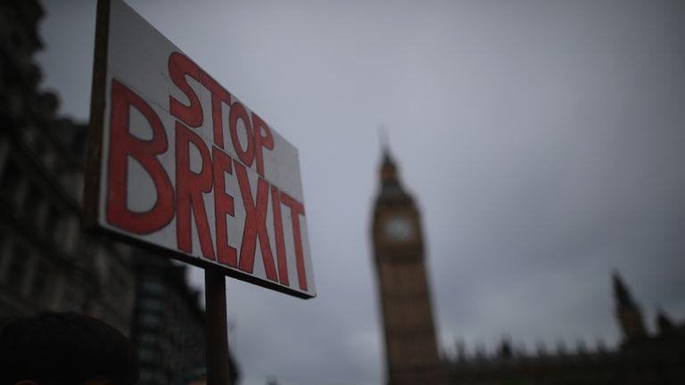 Remain voters protest against Brexit