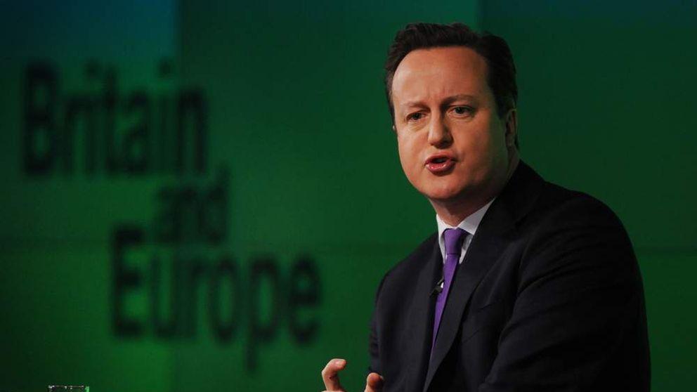 EU referendum David Cameron