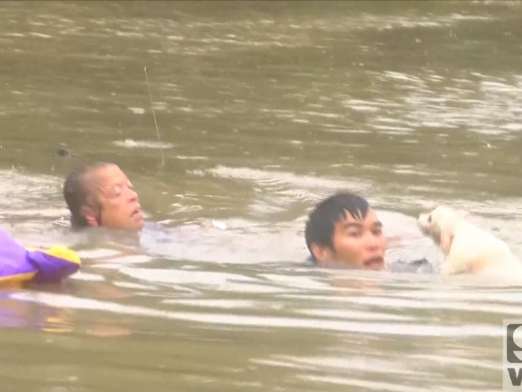 A drowning woman and her dog pulled from a submerged car in the nick of time