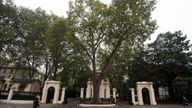 Kensington Palace Gardens remains Britain's most expensive street