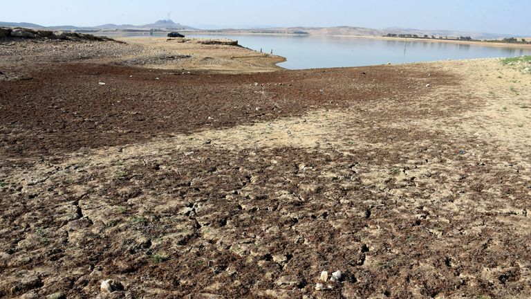 A photo taken on August 21, 2016 shows the Sidi Salem dam near Testour, in Tunisia's north-west Beja region, which has particularly low water levels due to a 30 percent drop in rainfall in the North African country this year. Water-cuts, dry dams and withering vegetation: Tunisia has faced a difficult summer due to a lack of rainfall which has reinforced social tensions in several disadvantaged regions. / AFP / FETHI BELAID / TO GO WITH AFP STORY BY MOUNIR SOUISSI (Photo credit should read FETHI