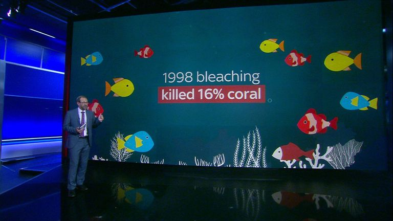 Thomas Moore explains why the oceans are under threat