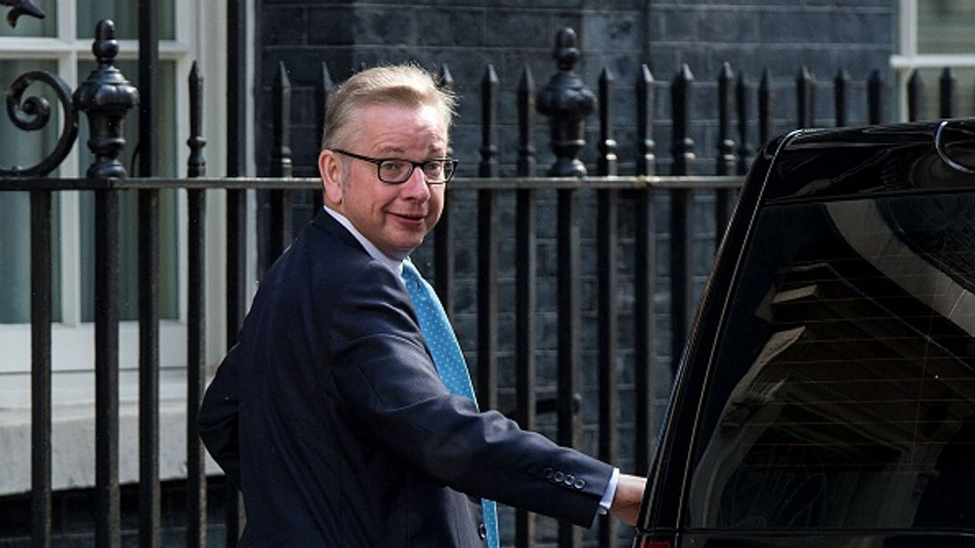 Michael Gove will help hold the Government to account over Brexit
