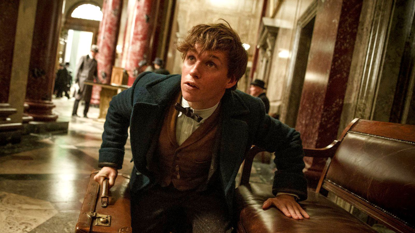 JK Rowling's Fantastic Beasts inspires new Natural History Museum exhibition