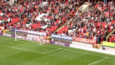 It's raining pigs at The Valley!