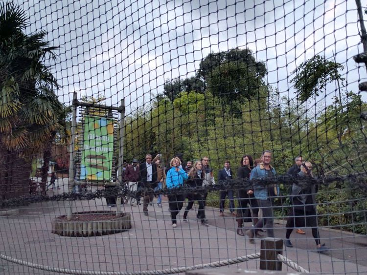 Staff lead people from a building at London Zoo after a gorilla escaped from its enclosure Pic: Dr Jonathan T Mall/Neuro-flash.com