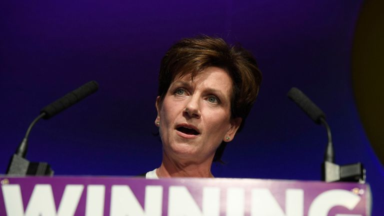 Diane James, UKIP's leader