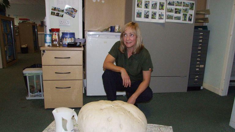 Fiona Wishart with a 10.6kg puffball mushroom she found near Polmont.