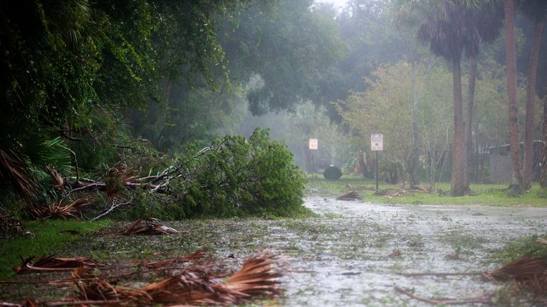 ORMOND BEACH, FL - OCTOBER 7: Tree branches and debris cover a street in a residential community after Hurricane Matthew passes through on October 7, 2016 in Ormond Beach, Florida. Florida, Georgia, South Carolina and North Carolina have all declared a state of emergency in preparation for Hurricane Matthew. (Photo by Drew Angerer/Getty Images)