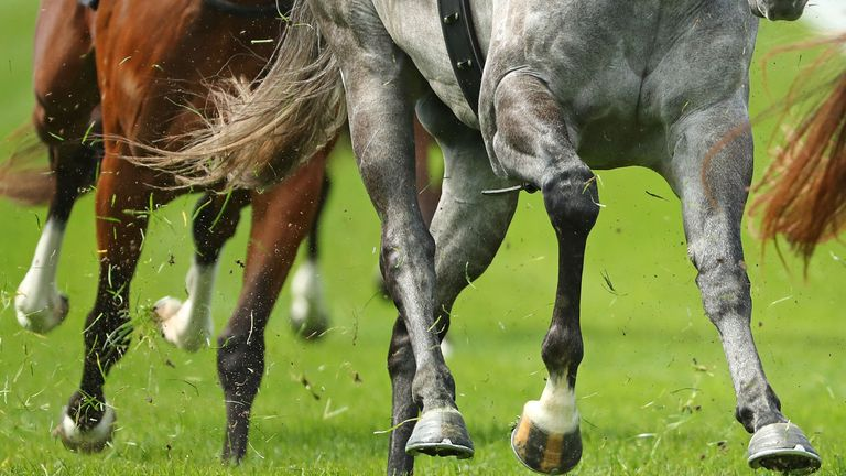 Horses throw up spoil from the course as they round the bend at Flemington racecourse in Melbourne, Australia