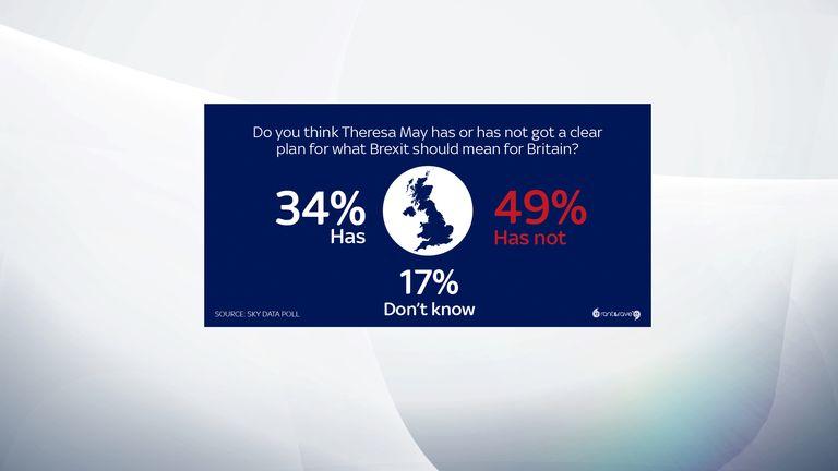 Half of Britons think Theresa May has no clear Brexit plan