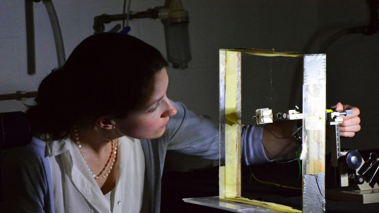 Beth Mortimer testing the web of the garden cross spider