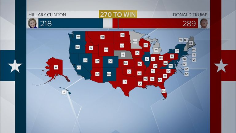 Gfx of voters in US election