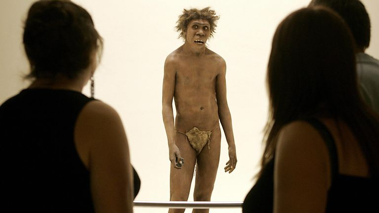 Evolution quirk purged humans of Neanderthal genes, says study