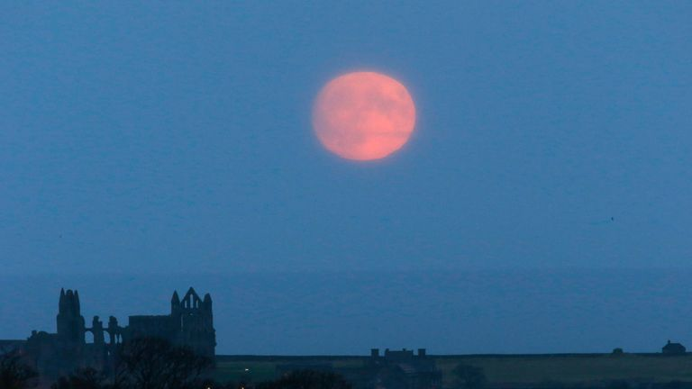 A supermoon rises over Whitby Abbey, in North Yorkshire, Britain November 13, 2016