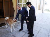 Russia's President Vladimir Putin presents his dog 'Yume' to Japanese Prime Minister Shinzo Abe