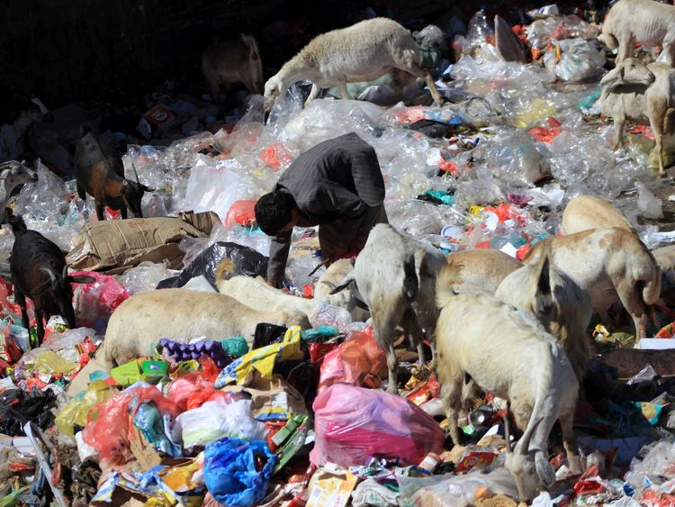 A Yemeni child collects items from a rubbish dump in the capital