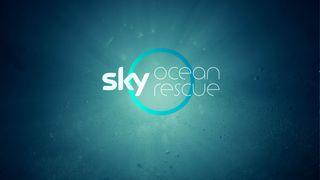 Sky ocean rescue campaign banner