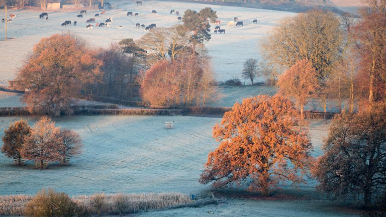 The UK experienced very cold temperatures overnight.