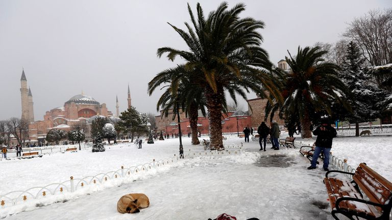 A man takes pictures of a stray dog, with the Byzantine-era monument of St. Sophia in the background