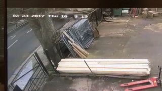 Still from CCTV showing a tree falling in Isleworth. Pic: Beaver Tool Hire