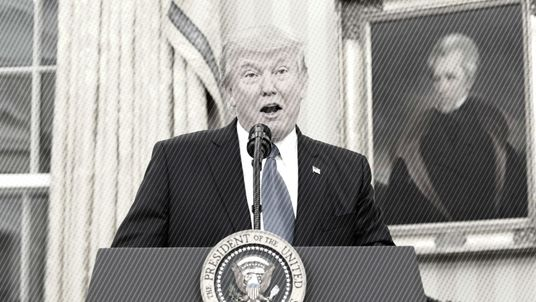 Trump in black and white - a fact check around his travel ban.
