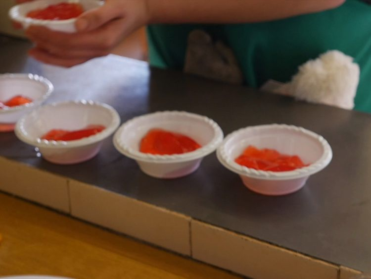 Children who qualify for free school meals during term time can miss out in holidays