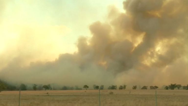 One fire alone burned through 124,000 acres
