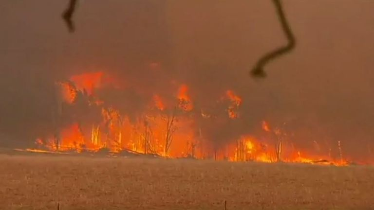 Ninety separate wildfires broke out